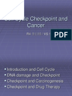 Cell Cycle Checkpoint and Cancer
