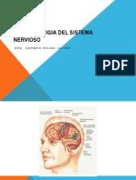 Fisiopatologia Del Sistema Nervioso