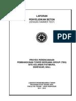 Report Hammer Site Kelandis Patimura