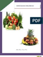 hortalizas organicas