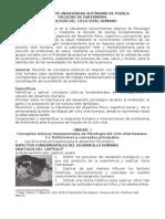 Antología de Ciclo Vital 2010
