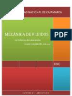 Informe de Fluidos i (Erick Rubio b)