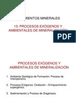 Procesos Xogenos y Ambientales de Mineralizacion