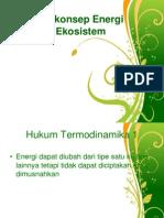 Asas Dan Konsep Energi Dalam Ekosistem (4)