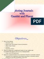 Exploring_journals in Fluent and Gambit