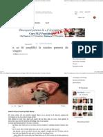 Cum Sa Iti Amplifici La Maxim Puterea de Convingere NLP Dezvoltare Personala Consiliere Incredere in Sine Terapie T