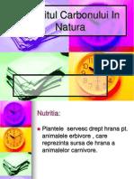 Circuitul Carbonului in Natura (1)