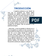 El Virus Del Papiloma