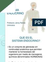 16- Sistema Endocrino