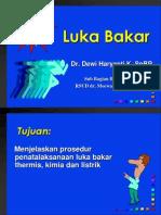 BURN-tutorial.ppt