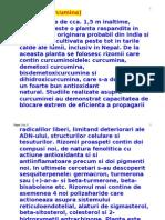 TURMERICUL-Curcumina.doc