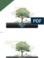 Produção e Consumo Sustentável