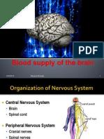 Vascularization and Cortex of the Brain-2011