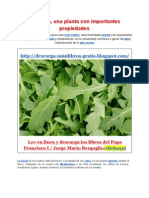 Propiedades_y_beneficios_de_la_Rúcula