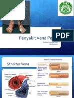 Penyakit Vena Perifer