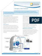 SONGSFactSheet Steam Generator FAQs Spanish