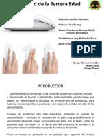 Presentacion Marketing Pedro_Mirna_Glenys Ver 2.0
