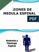 Clase Medula Espinal