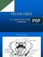 Pelvis y Canal Del Parto 07 (1)