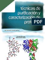 Tecnicas de Purificacion y Caracterizacion de Proteinas
