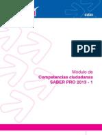 Guia de Competencias Ciudadanas 2013-1