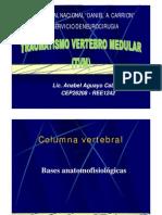 TVM-pdf-Anabel.pdf