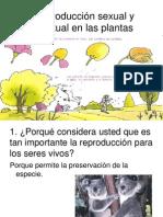 Reproduccic3b3n Sexual y Asexual en Las Plantas3