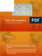 DNA Microsatélite.pptx