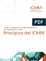 ICMM Principles Es
