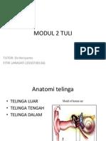 Modul 2 Tuli