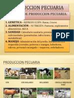 PRODUCCION_PECUARIA