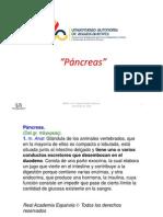 06-pancreas2010b