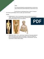 Desarrollo de La Escultura Griega