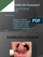 Presentacion General de Patologia