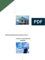 Plan de Afaceri OMV Petrom.doc