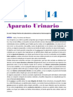 Apunte4680.pdf