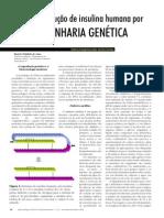 A produção de insulina humana por Engenharia genética