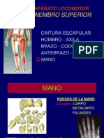 5 Mano