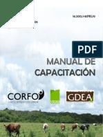 Manual PEL Mafil 2013.pdf