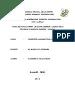 Proyecto de Inversion -Jean Trabajo