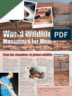 Wildlife massacred for meat