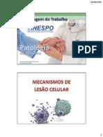 03 - Mecanismos de Lesão Celular