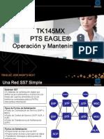 TK145 Overview STP Tekelec1.pdf