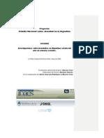 Informe Investigaciones Sobre Juventudes en Argentina