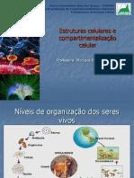 Aula 1 - Introdução ao estudo da célula