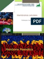 Aula 3 - Membranas Celulares
