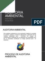 AUDITORIA AMBIENTAL.ppt