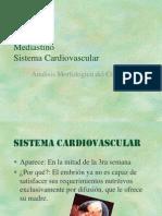 Clase 17 Analisis Morfologico Del Corazon (1)