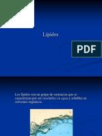 3a_Lipidos