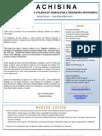 Boletín ACHISINA N° 4 (Junio 2013)